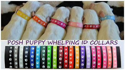 Puppy ID Whelping Paw Collars Dog Breeding Whelping Kit  Identification collar