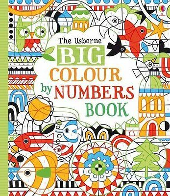Big Colour By Numbers Book Watt  Fiona 9781409566540