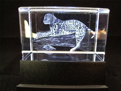 Solid Glass Crystal Laser Block and White Light Box - Leopard.