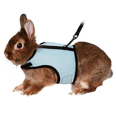 Guinea Rat Hamster Rabbit Ferret Small Pig Breathable Harness With Leash Lead