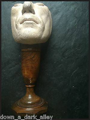 Antique Wax Head  / Mannequin / Shop Display - Gothic Cabinet of Curiosity