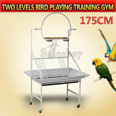 Two Levels 175cm Bird Parrot Canary Feeding Playing Training Gym Stand On Wheels