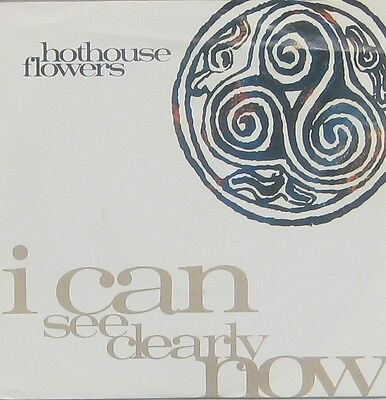 Hothouse Flowers  i can see clearly now
