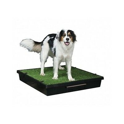 Dog Grass Potty Pad Large Indoor Training Portable Pet Pee Pad Toilet Mat Tray