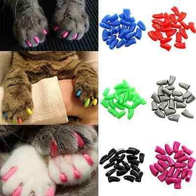 20pcs Cat Nail Covers Pet Claw Paws Caps Adhesive Glue Cover Protection Hot Sale