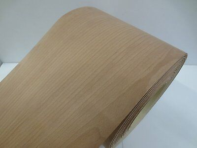 Real wood Veneer Common beech with Hot melt adhesive iron-on 30 cm Wide
