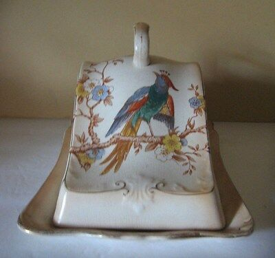 Antique Crown Devon Fieldings  Birds Cheese Dome Plate Blushware