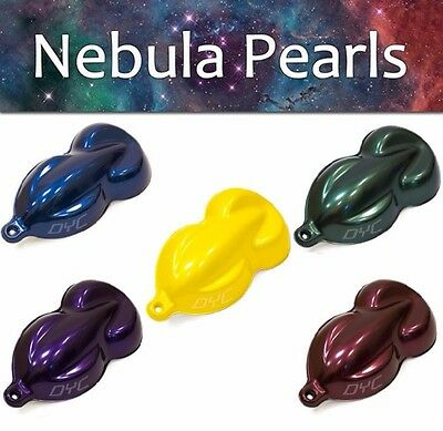 Nebula Pearl Pigment Powder Various Colors Plasti Dip Pearls 5g 25g Paint Nail