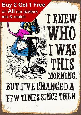 Alice In Wonderland I Have Changed - Vintage Classic Poster Print