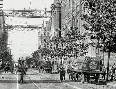 Pabst Brewery Photo Print 1901 Milwaukee, Wi   Horse wagons Bottled Beer