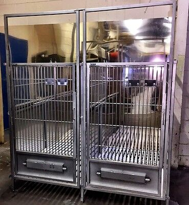 """Stainless Steel Dog Kennel / Cage 60""""' Deep X 38"""" Wide - Bank Of 5"""