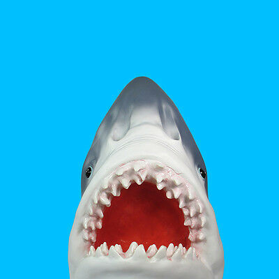 """Great White Shark Head Wall Mount Plastic  15"""" Inch Long Open Jaws Taxidermy"""