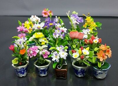 Variety Set of 10 Dollhouse Miniature Flower Plant Pots Ceramic Garden Handcraft