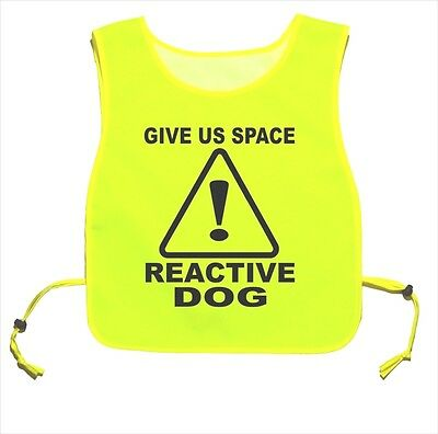 Give Us Space Reactive Dog Waterproof Yellow tabard Dog Walking Training 01