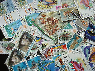 WATER LIFE Stamps Thematics 10 grams Whole World Mixed CTO's & Genuine Postage