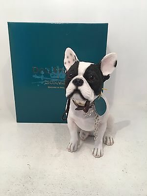 Dog Studies Large White & Black French Bulldog Walkies Figurine Ornament *BOXED*