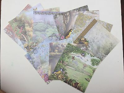 12 x Vintage Garden Floral Scrapbooking Card making Paper 6 X 6 Papers
