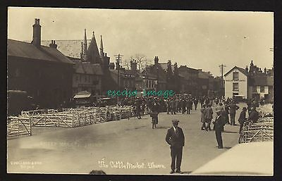 THAME The Cattle Market real photo postcard