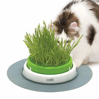 New Catit Senses 2.0 Cat Kitten Grass Planter Seeds Grow Kit Set Toy Pet Treat