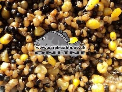 10kg Prepared Ready to Use Spod Mix Carp Fishing Bait Hemp Maize Particles Seeds