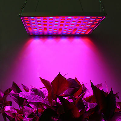 Newest Red&Blue 45w Led Grow Light Indoor Garden Hydroponic System Plant Growing