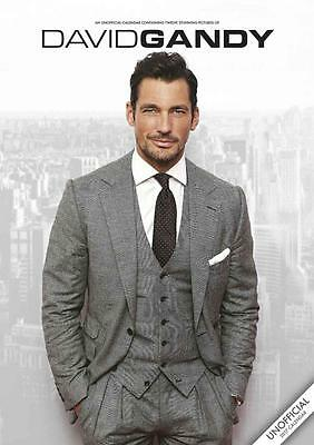 David Gandy 2017 Large Wall Poster Calendar New + Free Uk Postage By Red Star