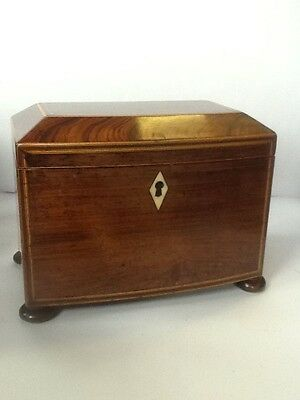 Rosewood Two Compartment Tea Caddy with Boxwood String Inlay