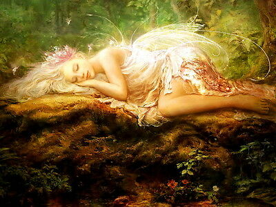 Decoration Home art Fairy Butterfly oil painting picture Printed on Canvas