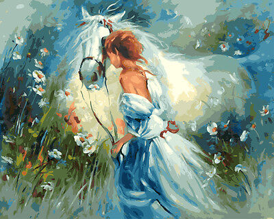 Painting by Number kit White Horse and Girl With White Skirt Animal DIY BB7622