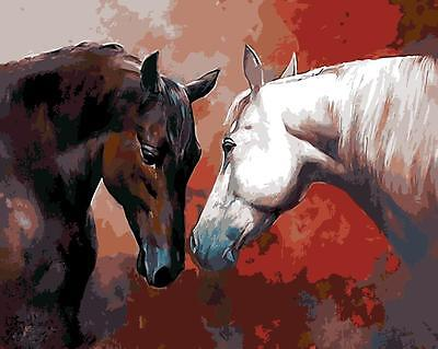 Painting by Number kit Two Horses Friends Brown and White Wild Animal DIY BB7626