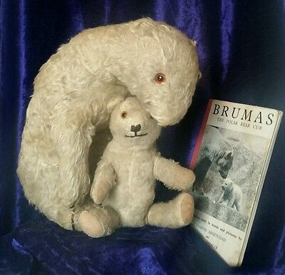 RARE Deans rag book Brumas mother & baby polar bear + book London Zoo