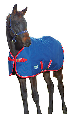 WeatherBeeta Original 1200D Foal Turnout - Navy/Red/White