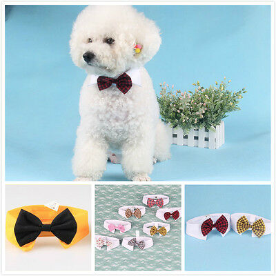 Dog Cat Pet Adorable Puppy Kitten Fashion Toy Bow Tie Necktie Collar Clothes New