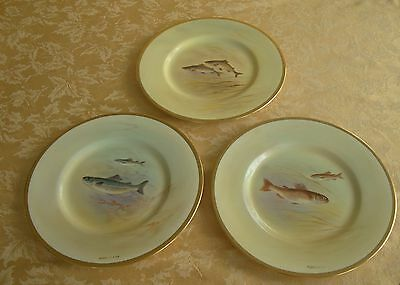 12 Royal Doulton Hand-Painted Gold Encrusted Fish Plates: Signed C. Holloway