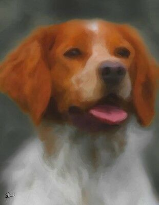 """Brittany Dog, Brn & White GEP Signed 11"""" x 14"""" Art Print / Painting / Watercolor"""