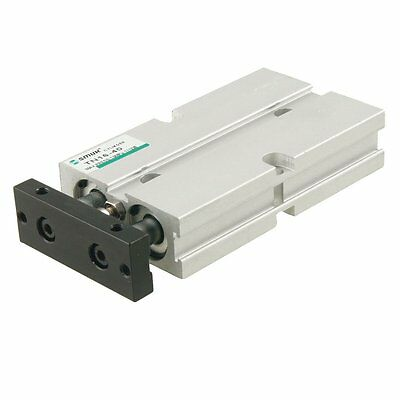 Dual Action 16mm Bore 40mm Stroke Double Rod Pneumatic Air Cylinder