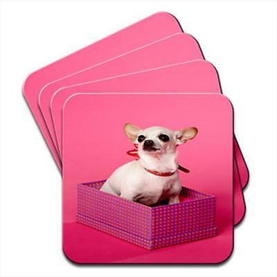 Chihuahua Dog Sitting In A Box Set of 4 Coasters