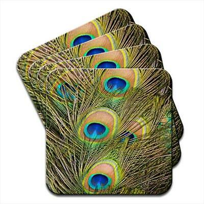 Peacock Feathers Set of 4 Coasters