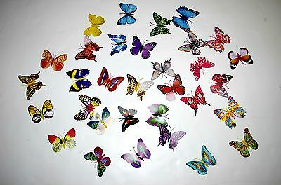 "12 pieces random color 3"" butterfly Magnet, made by poly film"