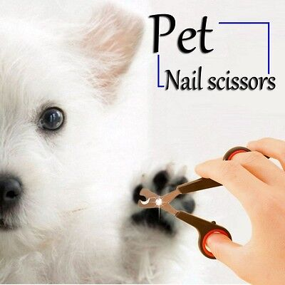 2Pcs Pet Nail Claw Grooming Scissors Clippers For Dog Cat Bird Gerbil Rabbit Fer