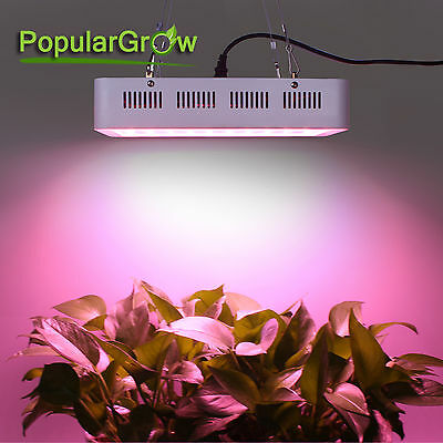 PopularGrow 300W led pflanzenlampe VollSpektrum Indoor hydro plant Grow Lighting