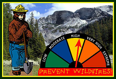 Real Moving Gauge Smokey Bear Fire Danger Warning Sign! U.s. Forest Service Park