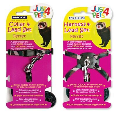 Ancol Ferret Small Animal Nylon Collar Lead Harness Walking Exercise Set