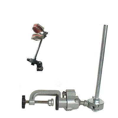 Dental Typodont  860 and Pole Mount Compatible with Columbia Brand Teeth