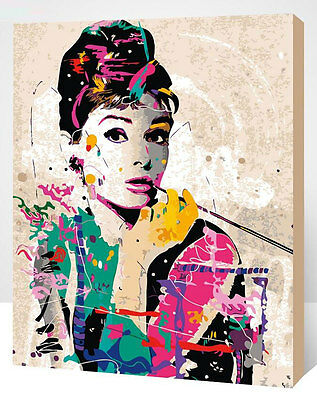 Framed Painting by Number kit Audrey Hepburn Film Star Beauty Lady DIY XK7142