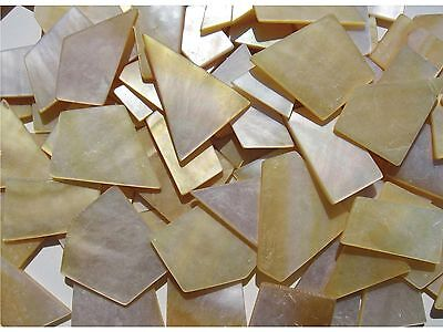 25g 1mm Thick Gold & White Mother of Pearl Pieces (Random Shapes 5-20mm)