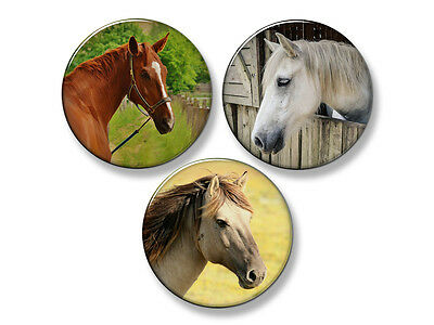 "BEAUTIFUL HORSES Fridge Magnet Set - 3 Large 2.25"" Round Magnets (Set #3)"