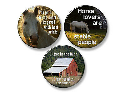 "HORSE SAYINGS Western Fridge Magnet Set - 3 Large 2.25"" Round Magnets (Set #1)"