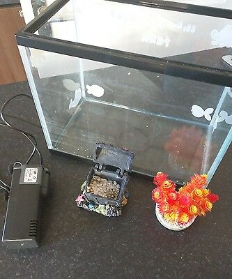 Starter Fish Tank with Filter, plants and ornaments