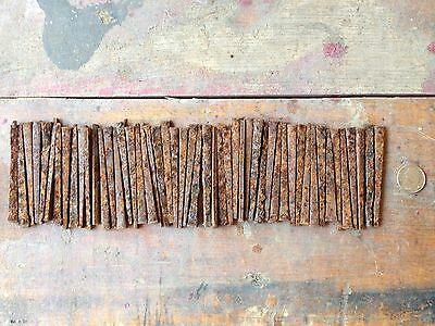 "Lot of 40  2 1/2"" Rusty Square Head Nails Great color Steampunk repurpose"